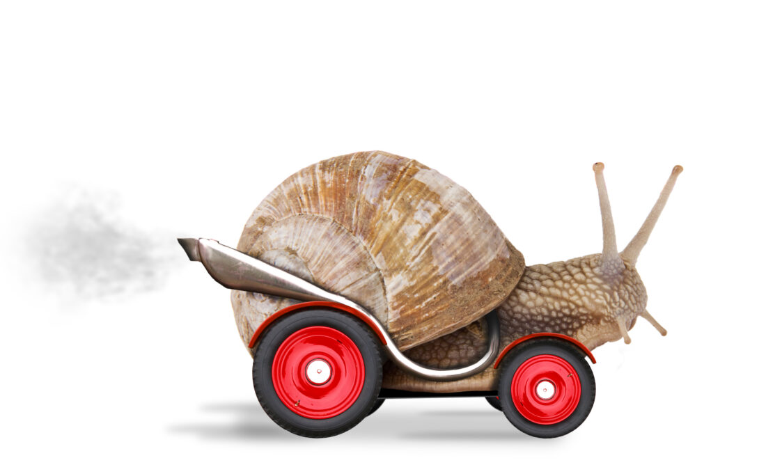 Snail with racing car wheels